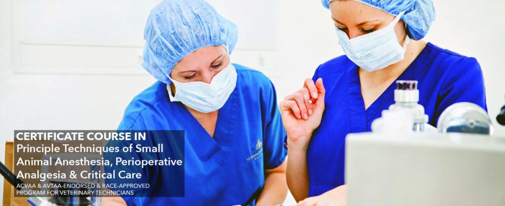 Critical Care Training Program For Nurses